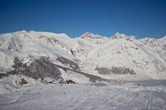 Sapins dans l'horaire d'hiver dans les Alpes photos libres de droits