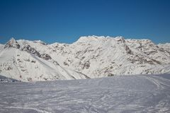 Sapins dans l'horaire d'hiver dans les Alpes Photo libre de droits