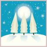 Sapins en nuit de l'hiver Image libre de droits