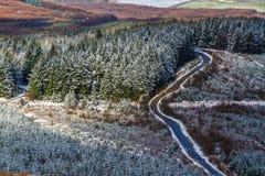 Sapins et route avec la bâche de neige légère, Royaume-Uni Coun Photos stock