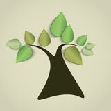 Sapling Royalty Free Stock Image