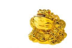 Sapo do chinês do deus Imagem de Stock