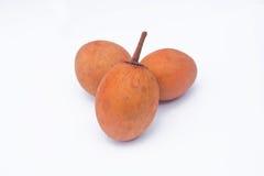 Sapodilla fruits. Royalty Free Stock Photography