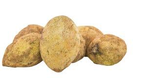 Sapodilla Fruits I Royalty Free Stock Images