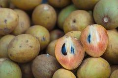 Sapodilla frukten av thailändsk söt arom Royaltyfri Fotografi