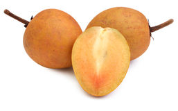 Sapodilla plum Royalty Free Stock Images