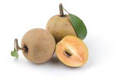 Sapodilla plum, Sapota (Manilkara zapota (L.) P. Royen). Stock Photography