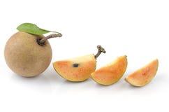 Sapodilla plum, Sapota (Manilkara zapota (L.) P. Royen). Royalty Free Stock Photos