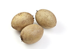 Sapodilla or Sapoche (Manilkara zapota) Royalty Free Stock Photography