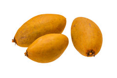 Sapodilla Royalty Free Stock Images