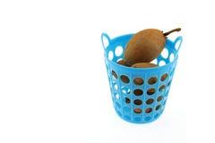 Sapodilla Thais fruit in mand Stock Fotografie