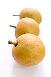 Sapodilla, tropical fruit. Sapodilla, tropical fruit in the rainy season Royalty Free Stock Image