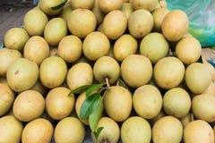 Sapodilla, tropisch die fruit bij Lange het fruitmarkt van Vinh wordt getoond, Mekong delta De meerderheid van de vruchten van Vi royalty-vrije stock fotografie