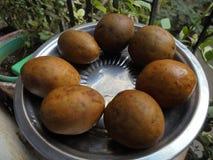 Sapodille in India fotografia stock libera da diritti