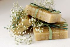 Sapone con gli ingredienti naturali Immagine Stock