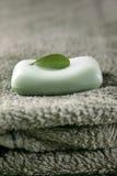 Sapone con il foglio verde Fotografie Stock