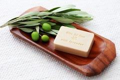 Sapone dell'olio di oliva immagini stock libere da diritti