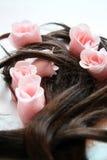 Sapone e capelli marroni Immagini Stock