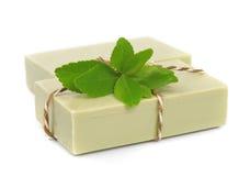 Sapone e fogli di tè verde fotografia stock