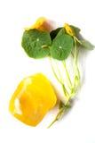 Sapone fatto a mano arancio con i fiori Isolato fotografia stock libera da diritti