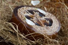 Sapone naturale del loofah fotografia stock