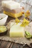 Sapone naturale Handmade Immagine Stock
