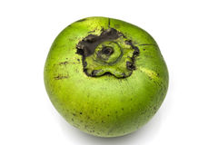 Sapote Stock Photos