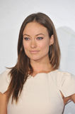 Olivia Wilde Stock Photography