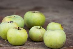 Sappig en heerlijk Apple die op de lijst, fruit aangaande de lijst liggen Appelen op witte achtergrond de appelen liggen op de li royalty-vrije stock fotografie