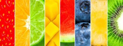 Sappig en vers fruit Gemengd van watermeloen, ananas, kiwi, bosbes, mango, kalk, sinaasappel, appel, aardbei royalty-vrije illustratie
