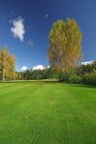 Sappig gras en de herfstlandschap Royalty-vrije Stock Afbeeldingen