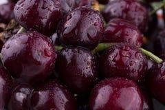 Sappig kersenfruit Royalty-vrije Stock Afbeeldingen