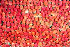 Sappige aardbeien. Stock Fotografie