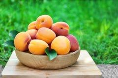 Sappige abrikozen in kom Royalty-vrije Stock Foto's