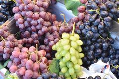 Sappige clusters van druiven royalty-vrije stock foto