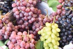 Sappige clusters van druiven stock foto's