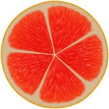 Sappige fruitplak royalty-vrije illustratie