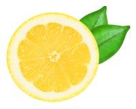 Sappige gele citroen op een witte geïsoleerde achtergrond Royalty-vrije Stock Afbeelding
