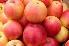 Sappige, geurige appelen die voor de pastei moeten worden gebruikt royalty-vrije stock afbeelding
