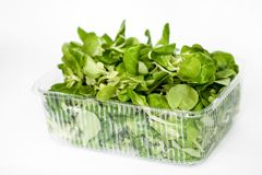 Sappige groene spinazie in een transparante container royalty-vrije stock afbeelding