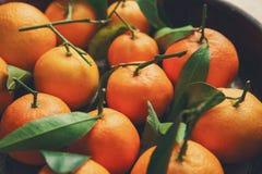 Sappige mandarijnen in kom, stock afbeeldingen