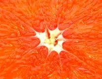 Sappige pulp van grapefruit stock fotografie