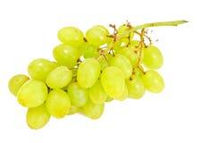 Sappige Rijpe die Druiven op Witte Achtergrond worden geïsoleerd Stock Foto