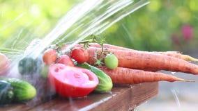Sappige rijpe groenten onder de nevel van schoon water stock footage