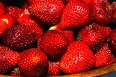 Sappige rode aardbeien op een hete dag Stock Foto