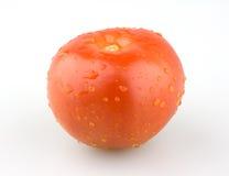 Sappige rode tomaat met waterdruppeltjes Royalty-vrije Stock Afbeelding