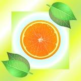 Sappige sinaasappel met bladeren Royalty-vrije Stock Foto