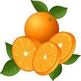 Sappige Sinaasappelen Royalty-vrije Stock Foto