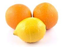 Sappige sinaasappelen en citroenen Stock Fotografie