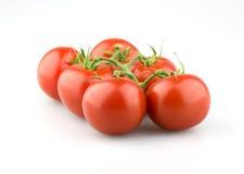Sappige tomaten met stam Royalty-vrije Stock Afbeeldingen